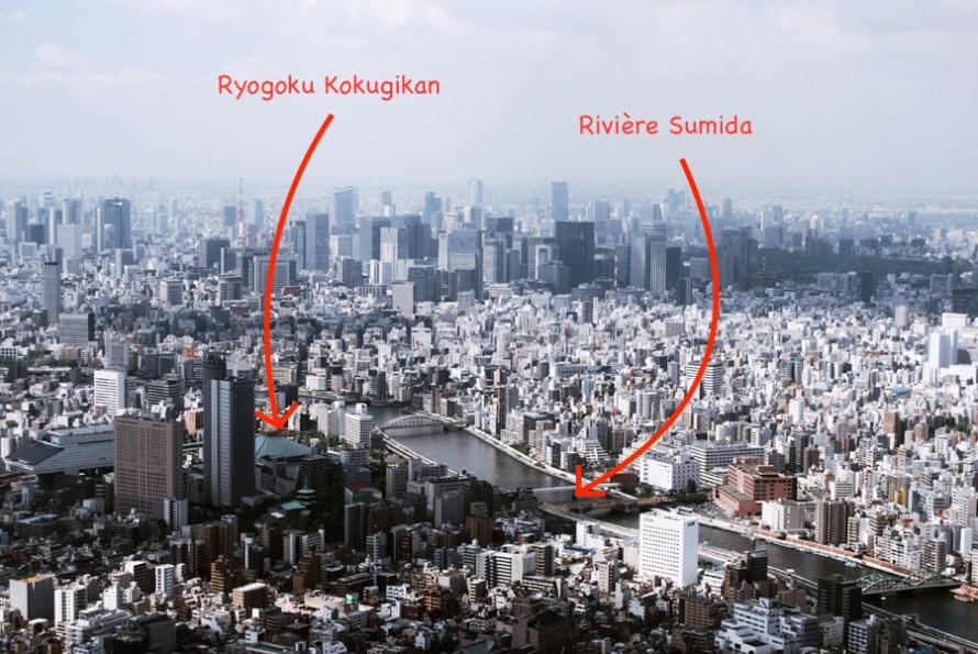 Sumo - ryougoku district (chanko nabe)