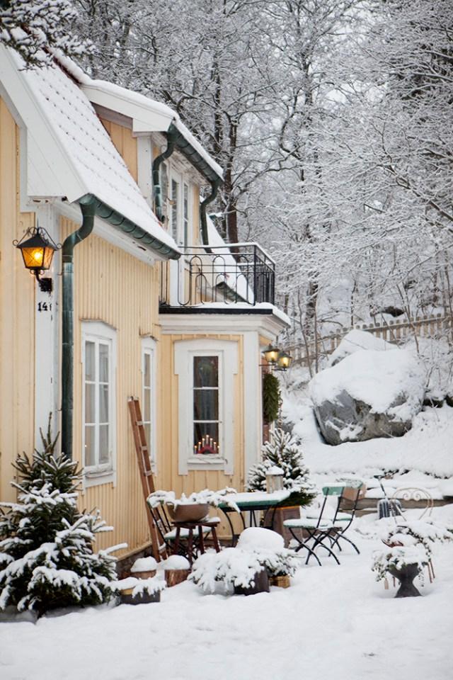 Vinter-1L