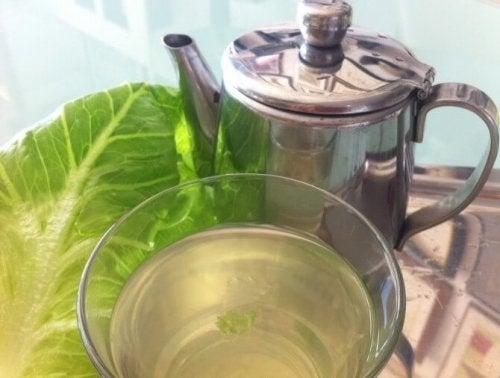 thé à la laitue contre l'insomnie
