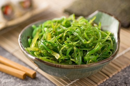 Algae to consume between meals