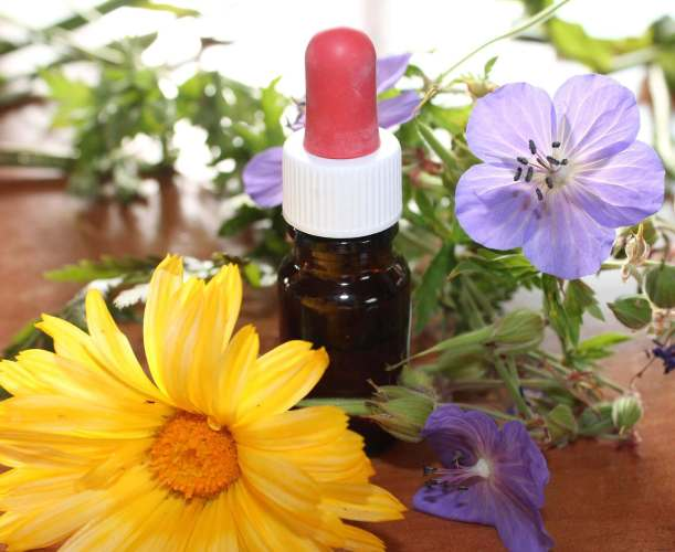 l'aromathérapie l'équilibre et l'harmonie du corps et de l'esprit