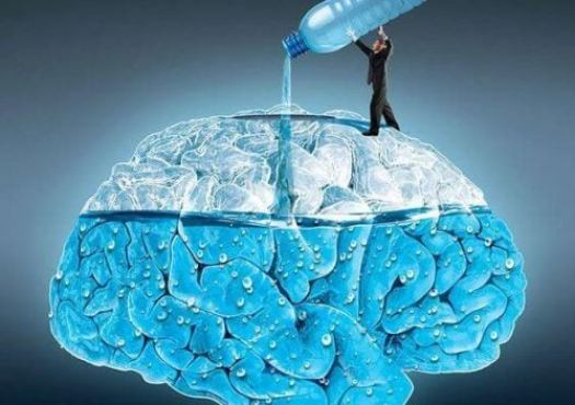 Les bienfaits d'une bonne hydratation sur le cerveau