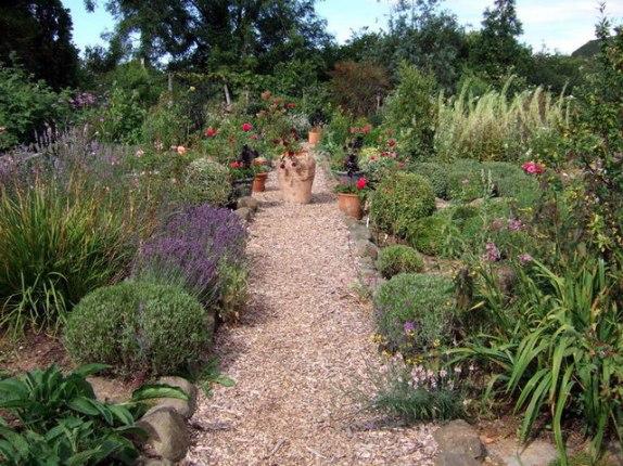 chemin avec du paillage végétal au sol dans le potager