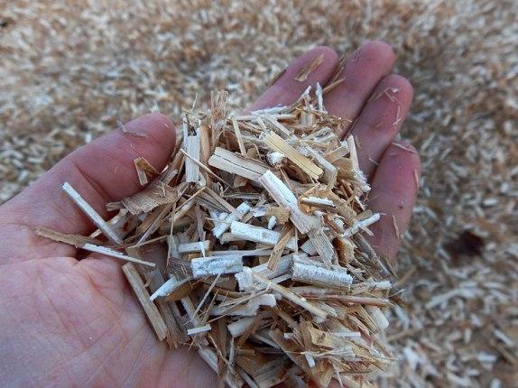 paillage végétal de miscanthus comme paillis pour les massifs