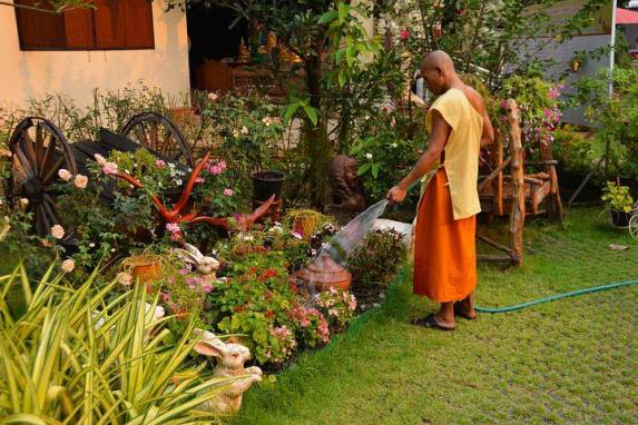 la méditation dans le jardin comme bienfait du jardinage