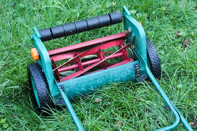 tondeuse mécanique pour les allergiques au gazon