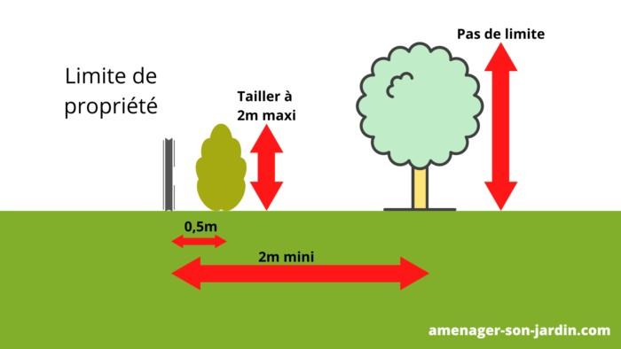schéma distance plantation arbre et arbustes de la clôture