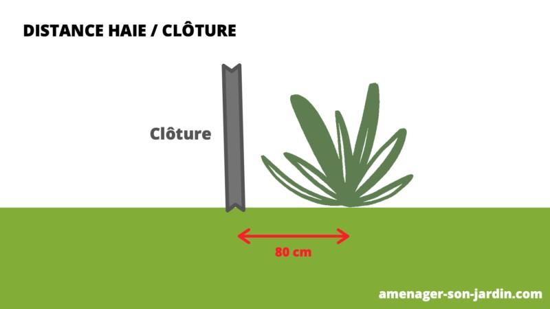 schéma distance arbustes haie par rapport à la clôture