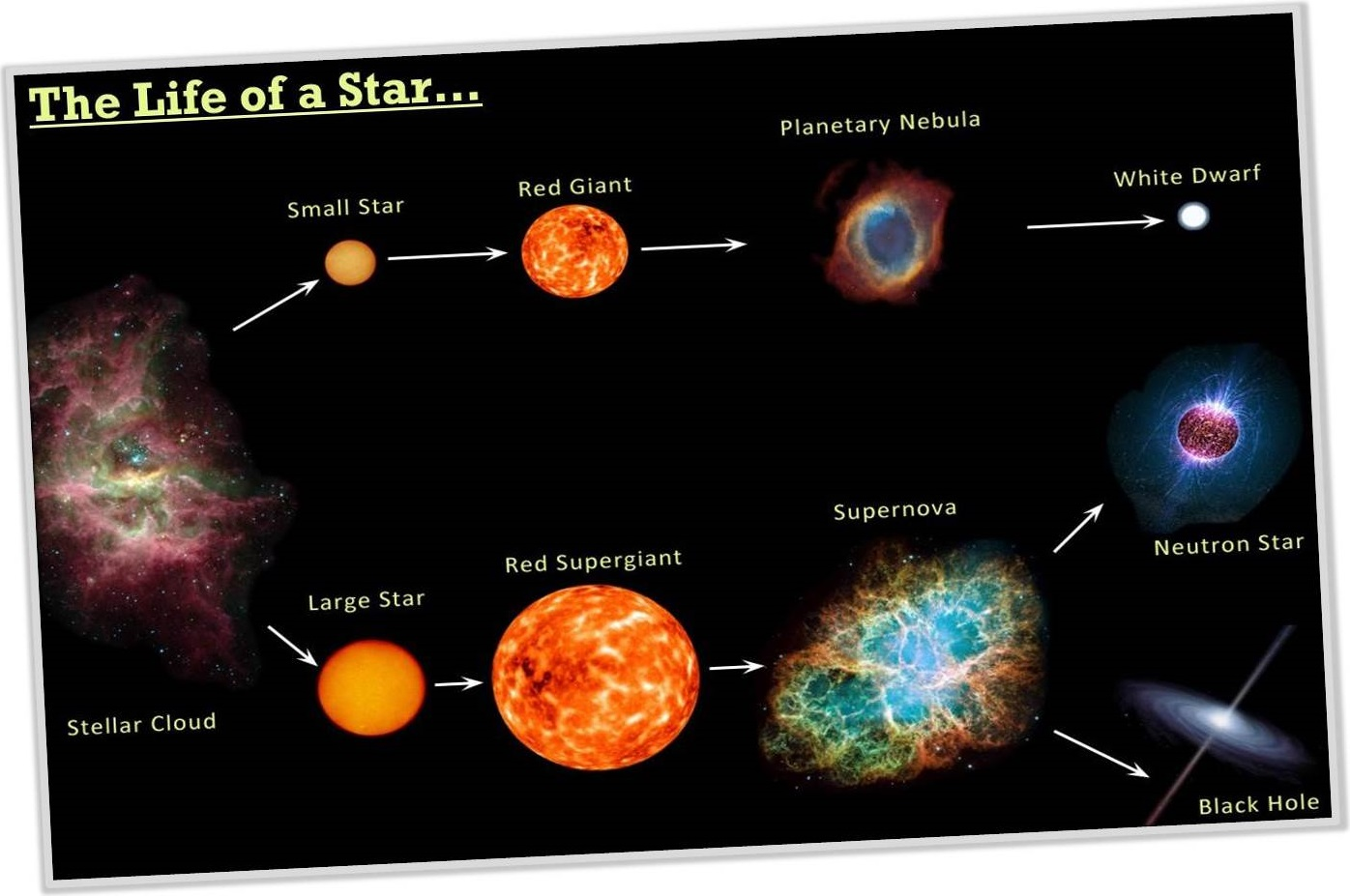 The Life Of A Star Ascience