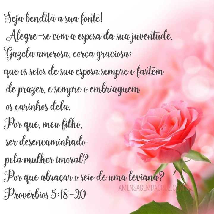 Esposa da Juventude - versiculos-sobre-amor-proverbios-5-18-20