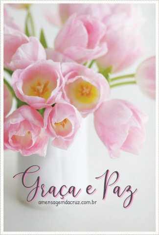 Graça e paz - mensagem evangélica para whatsapp