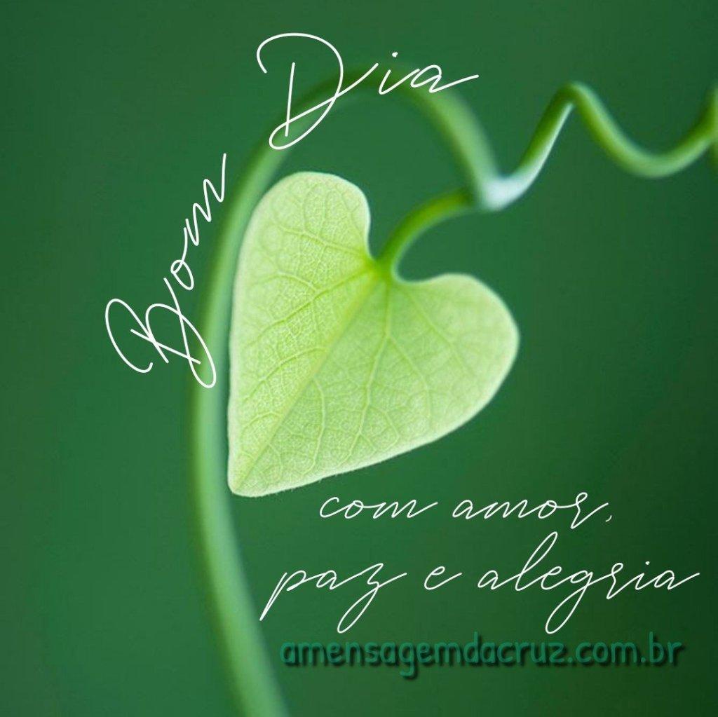 Bom dia com amor, paz e alegria