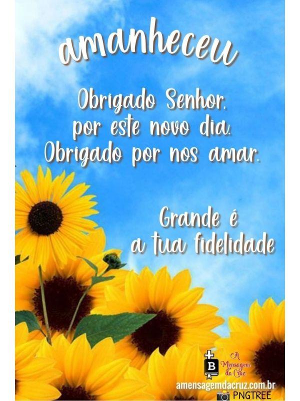 Amanheceu - o Amor de Deus - Mensagem de Bom Dia