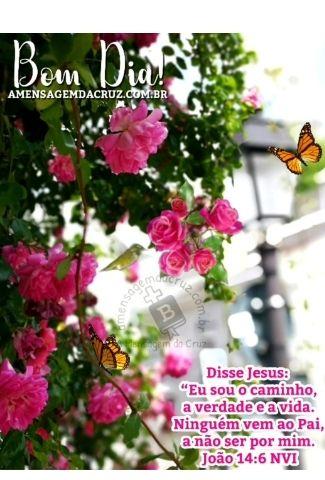 Jesus é o único caminho-salvação-vida eterna.jpg