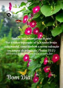 Misericórdia, Senhor - Mensagem de Bom Dia