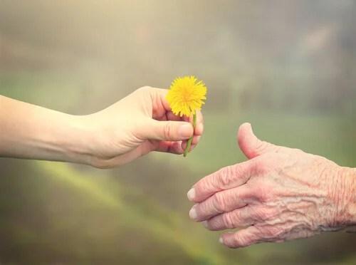 mao-jovem-dando-flor-a-idosa