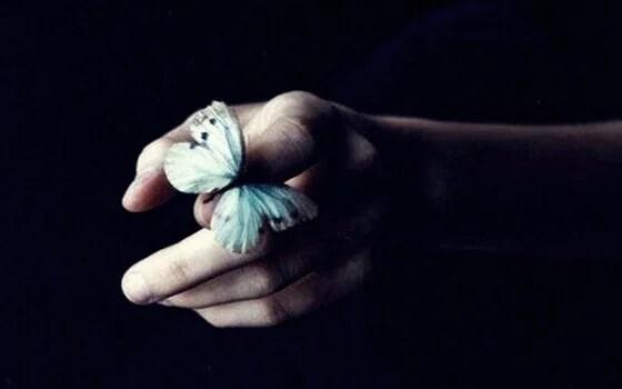 Borboleta pousando em mão