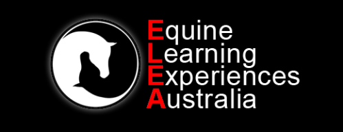 Equine Learning Experiences Australia