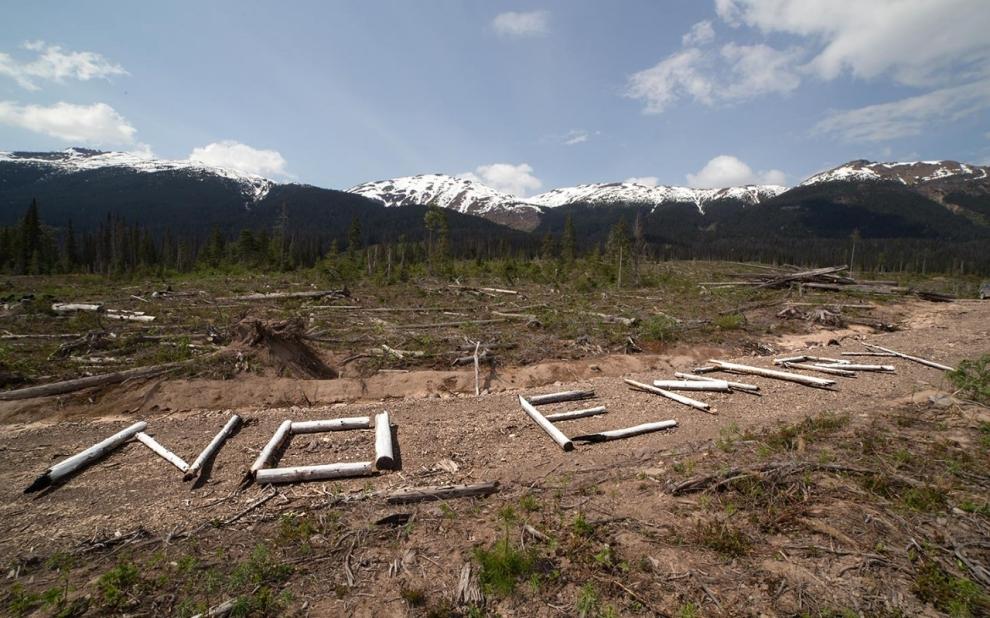 Unist'ot'en, British Columbia, pipeline development