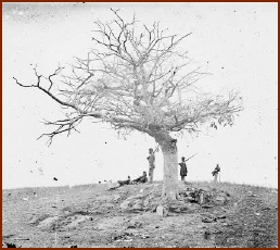 A Lone Grave — public domain photo courtesy of Antietam on the Web