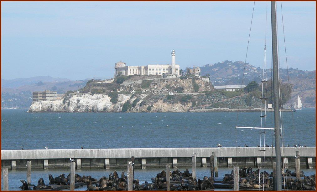 Seals and Alcatraz — © 2008 America InContext