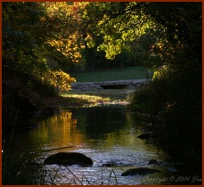 Travertine Creek -- Public Domain Photo Courtesy of National Park Service
