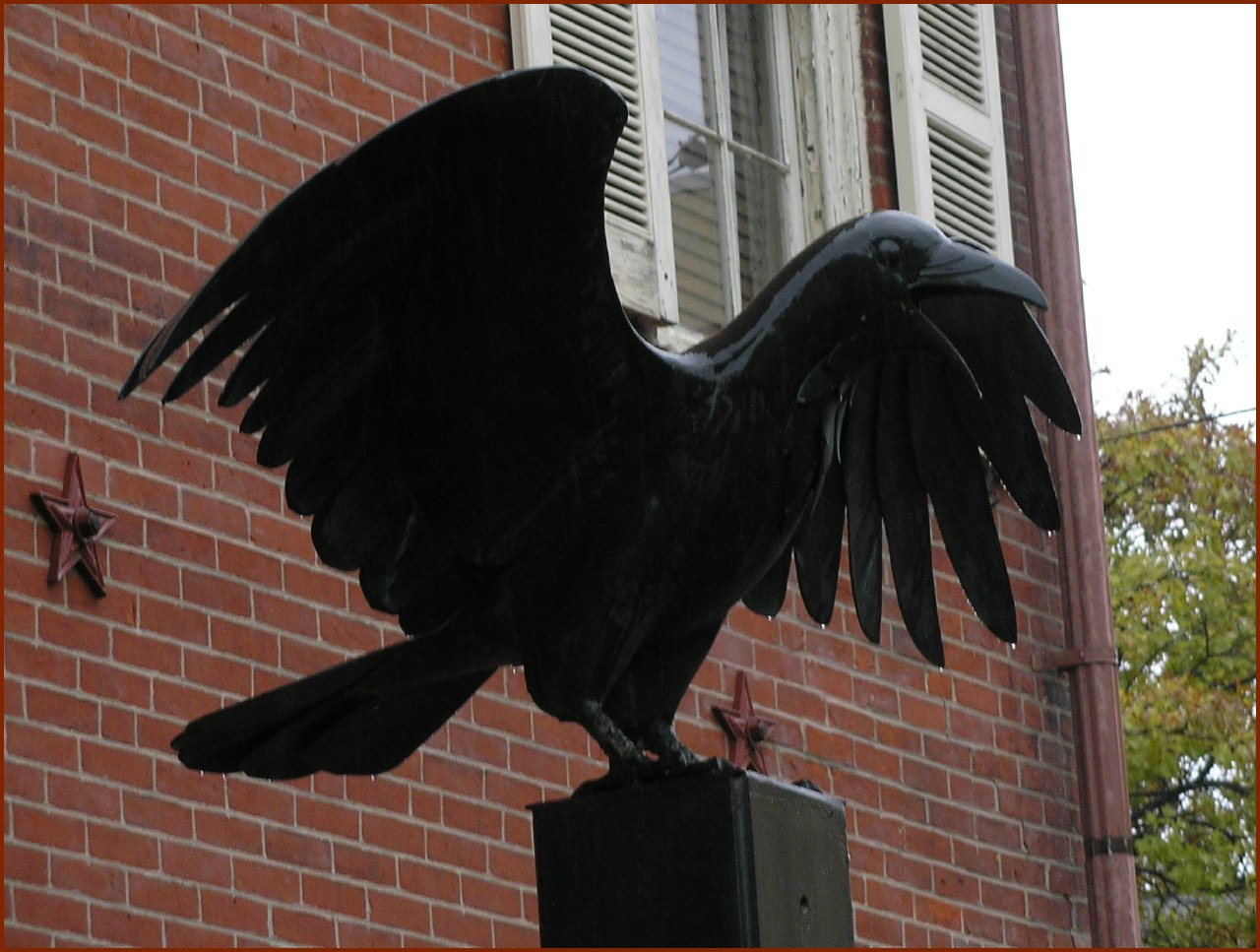 The Raven © 2009 America In Context