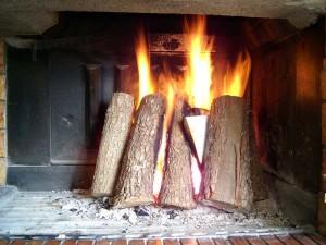 Smelly Fireplace - Portland OR - American Chimney & Masonry