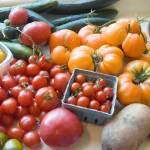 Vegetable-Garden2