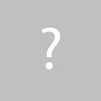 Squirrel Removal Goshen