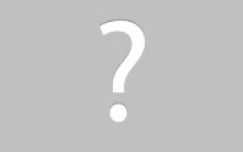 Animal Removal Niles, Michigan bat removal image