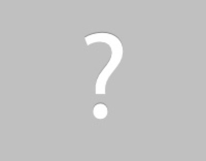 Siding repairs needed because of animal damage