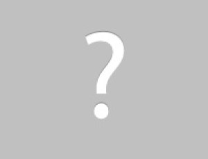 attic inspection service damage to attic fan vent