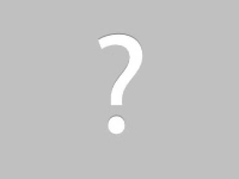 Maintain the gutters to avoid roof rot and raccoon damage!