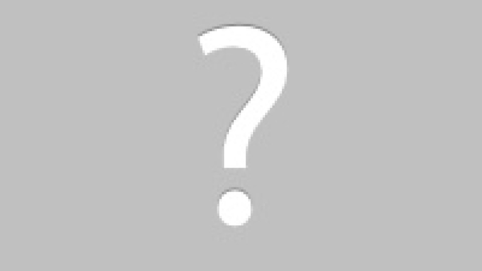 don't feed raccoons