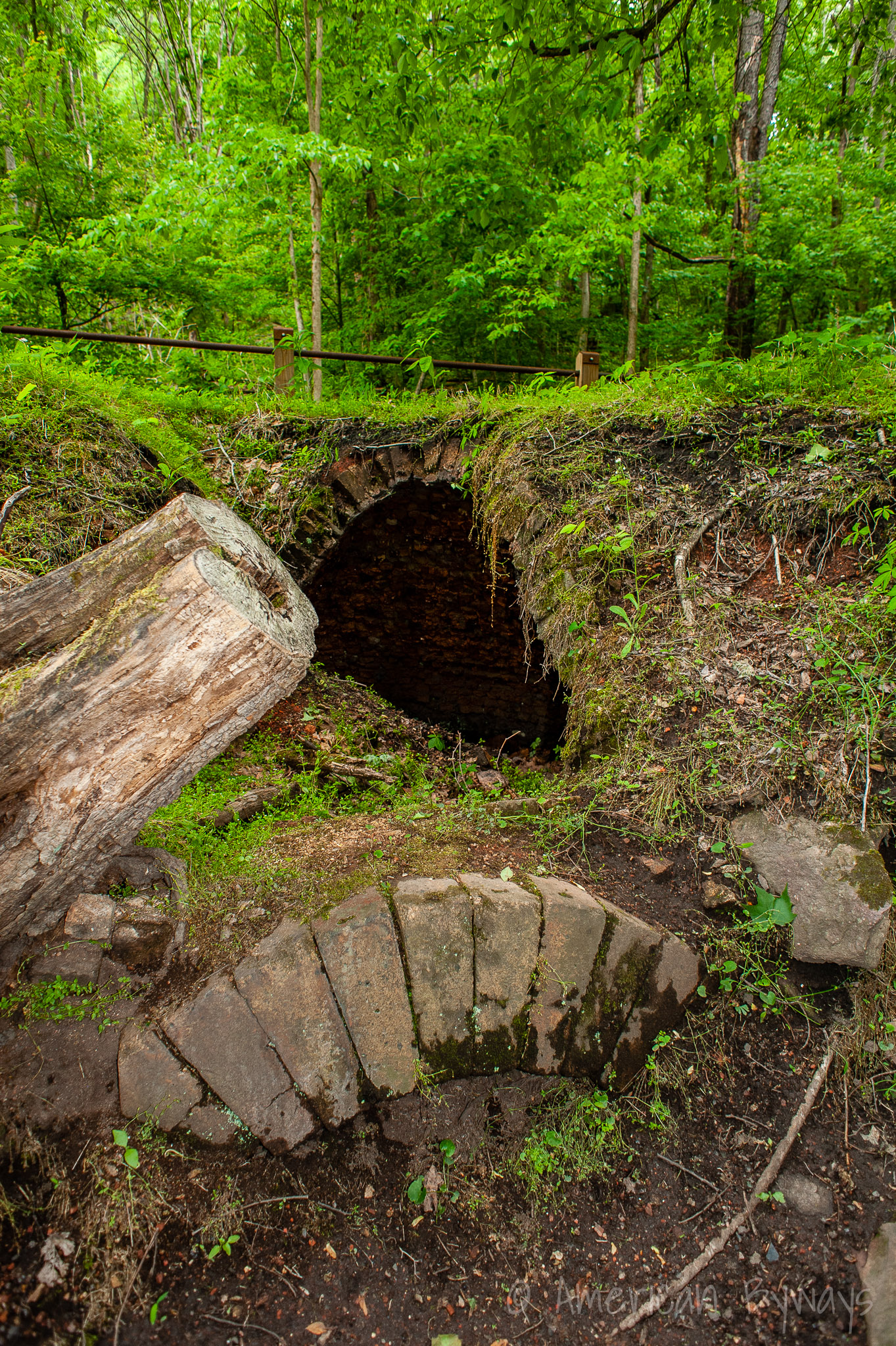 Nuttallburg Coke Oven Ruins