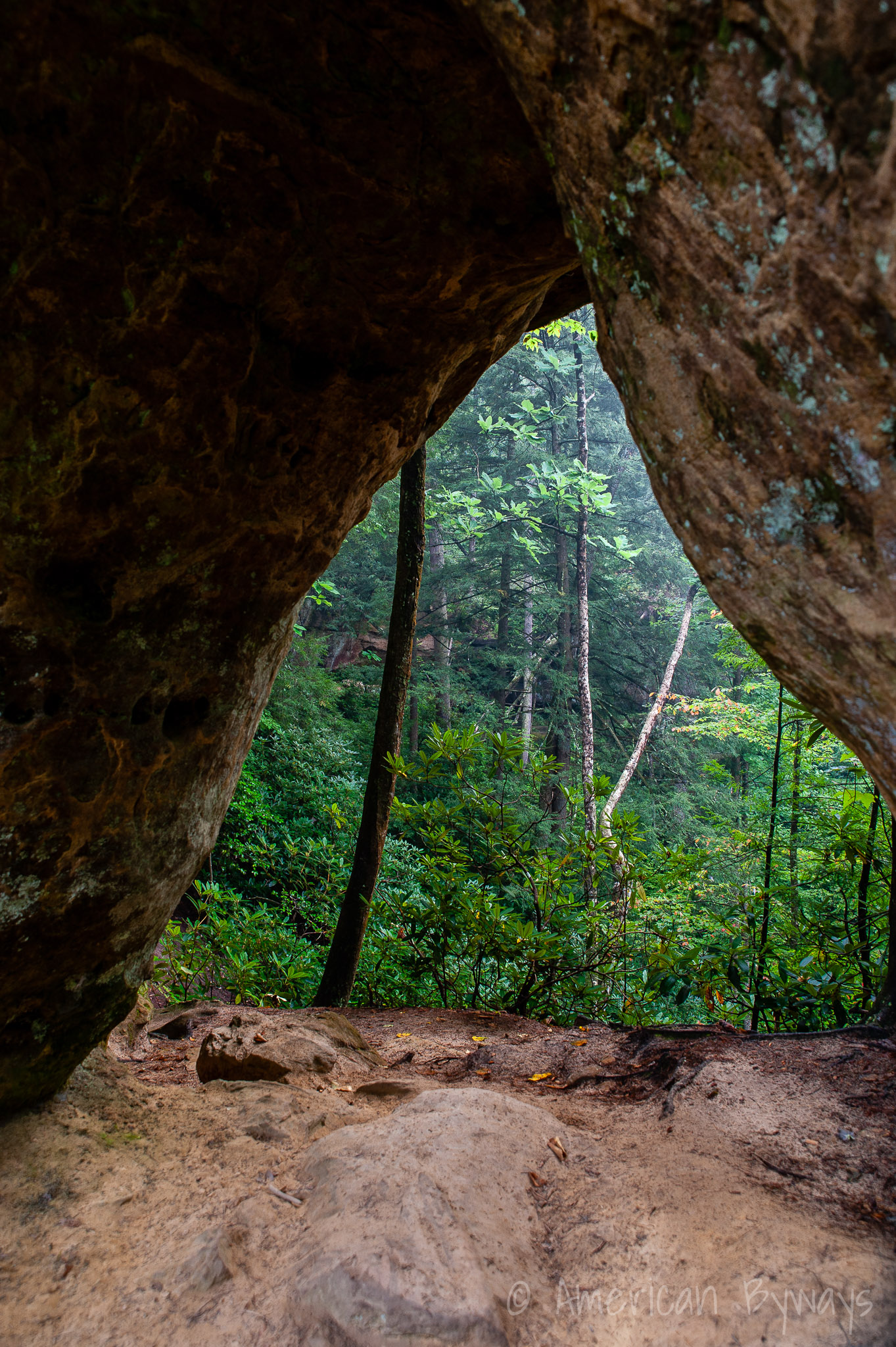 Angel Windows Arch at Red River Gorge