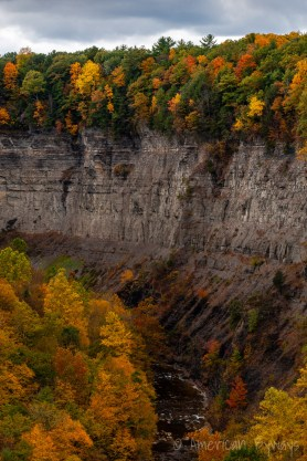 Taughannock Creek Canyon