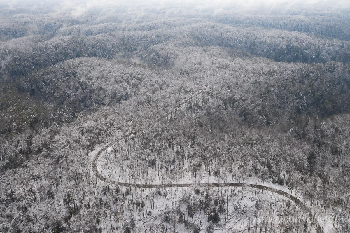 Pine Ridge at Red River Gorge