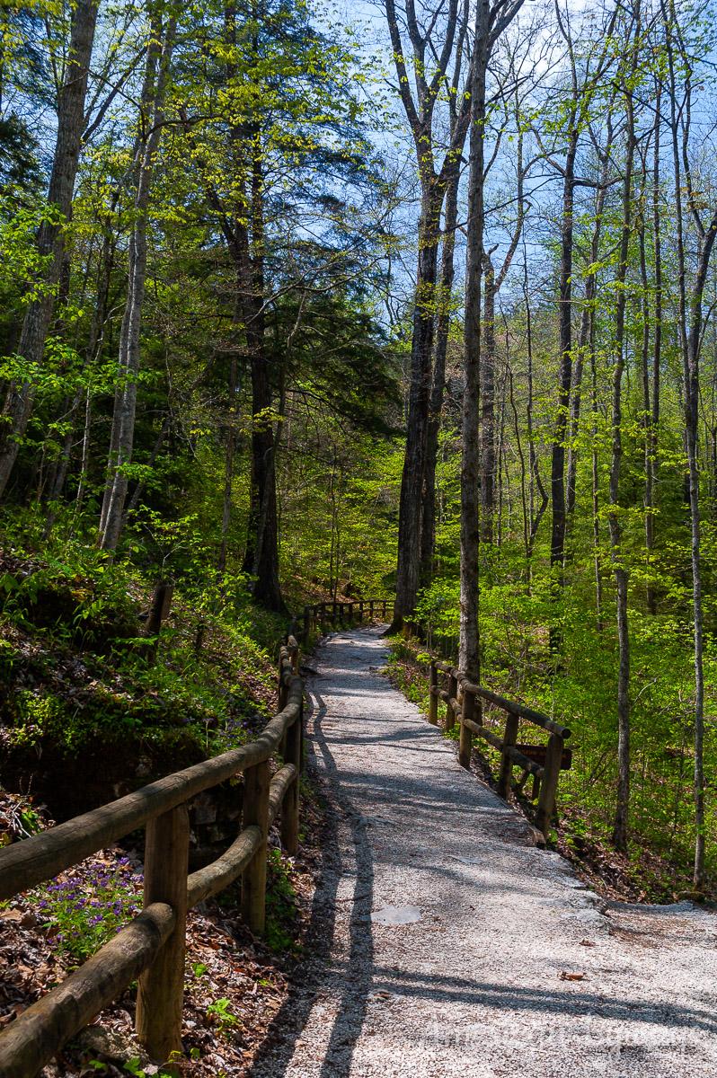 Original Trail