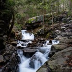Cascades along Wheelbarrow Run