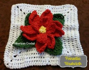 Poinsettia Washcloth