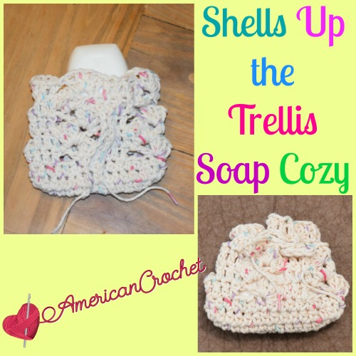 Shells Up the Trellis Soap Cozy