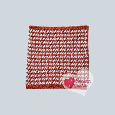 Pumpkin Spice Washcloth