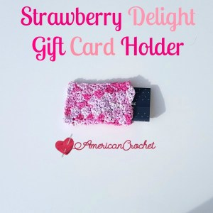 STRAWBERRY DELIGHT GIFT CARD HOLDER~ FREE CROCHET PATTERN