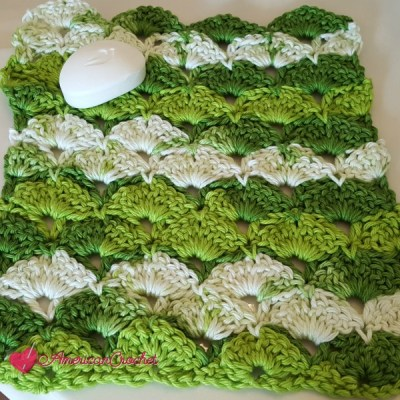 Apple Juicy Washcloth