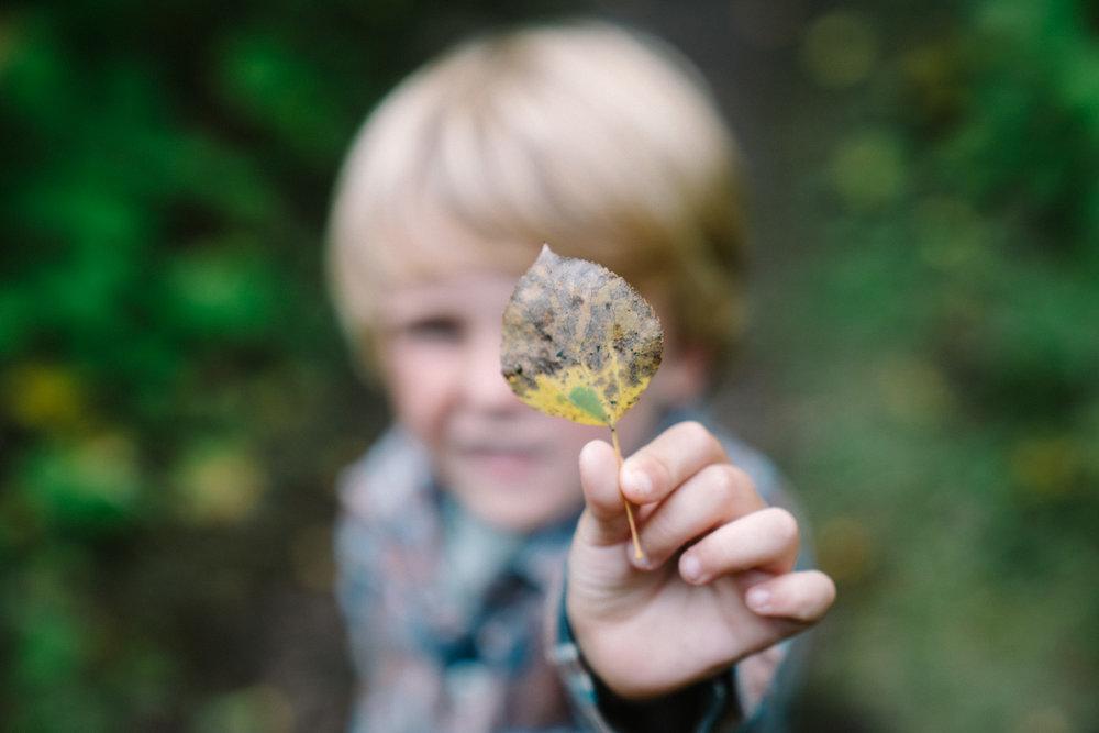 Child holding up leaf.