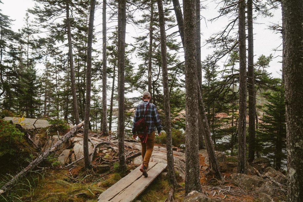 man walking on boardwalk trail in acadia national park