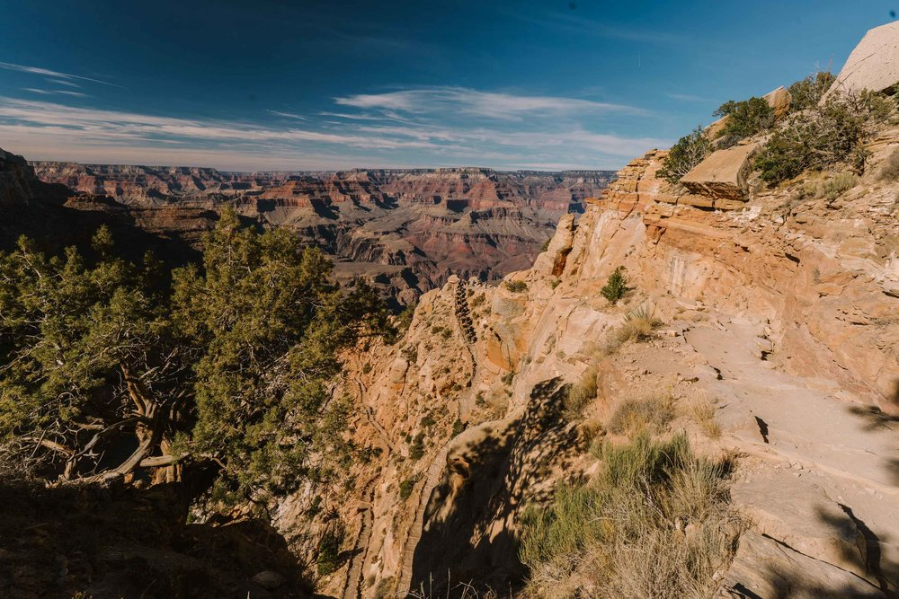 The mule train passed us at Ooh Aah Point, carrying vittles and doo-dads for the folks at Phantom Ranch.