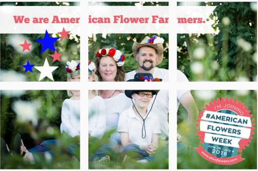 The Pabody family created a fantastic Instagram mosaic to celebrate #americanflowersweek